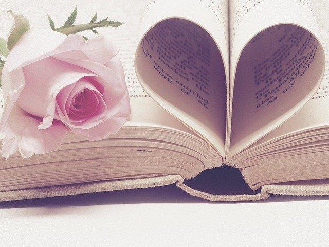 symbol lásky ke studiu – knihu v příslušném tvaru.jpg